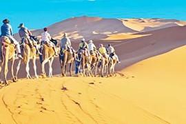 Maroc: le gouvernement ira chercher les Canadiens coincés sur place cette fin de semaine
