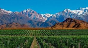 Découvrir l'Argentine autrement: fête des vendanges de Mendoza