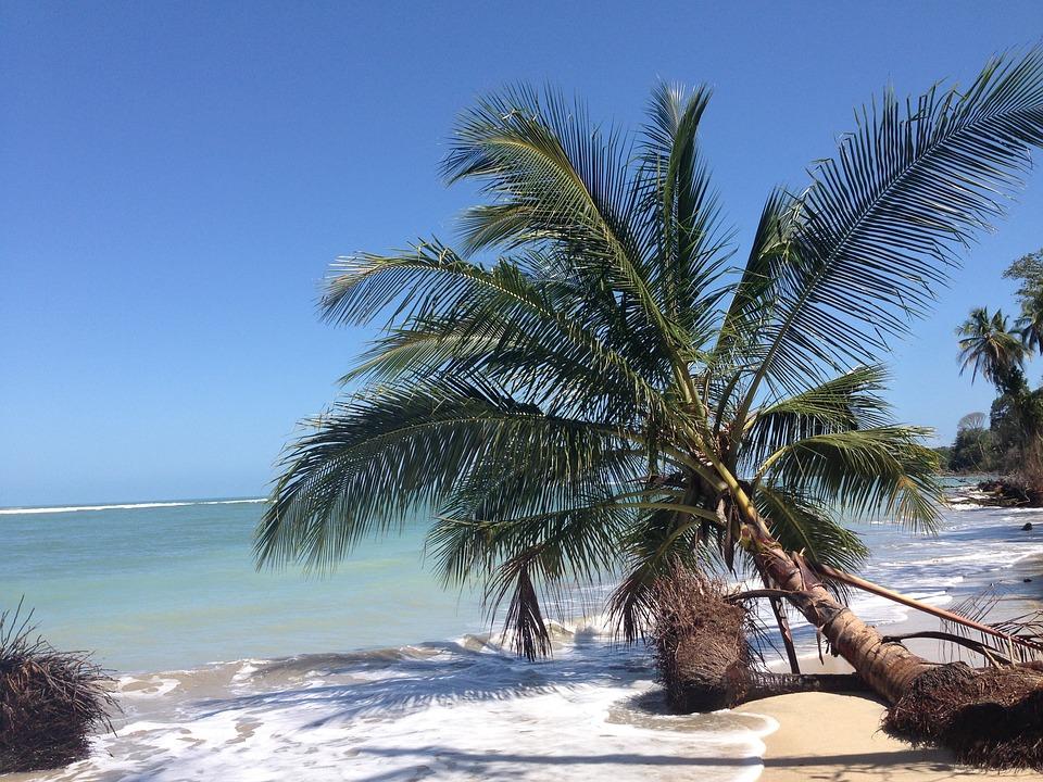 nature et calme sur les plages du costa rica