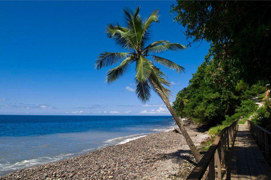 voyage et tourisme la dominique