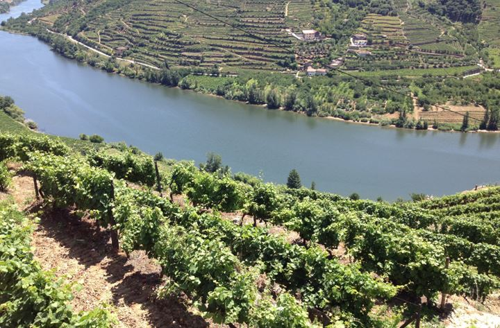 la vallée du douro au portugal