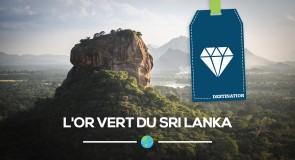L'or vert du [Sri Lanka]