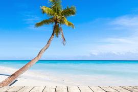[Coronavirus] Le résumé des nouvelles du jour (3 avril 2020): République dominicaine, les navires d'Holland America, Club Med, USA, Emirates, Affaires mondiales Canada …