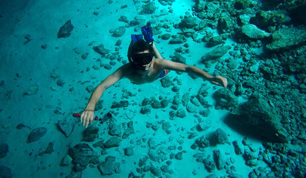 yucatan plongée