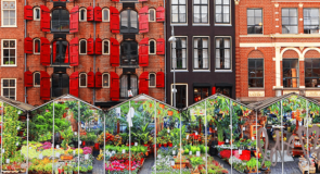 Amsterdam: Zoom sur le marché aux fleurs