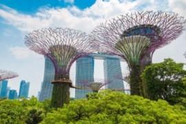[Coronavirus] Le résumé des nouvelles du jour (21 avril 2020) : Caribe Sol, MSC, Airbus, G Adventures, Singapour, Marriott, Disney, Italie …