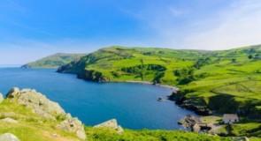 """L'Irlande se prépare à la réouverture le 19 juillet avec la mise en œuvre du """"Digital Green Pass"""" de l'UE"""